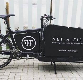 Fin and Flounder Cargo Bike